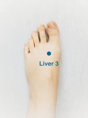 Liver 3.jpg