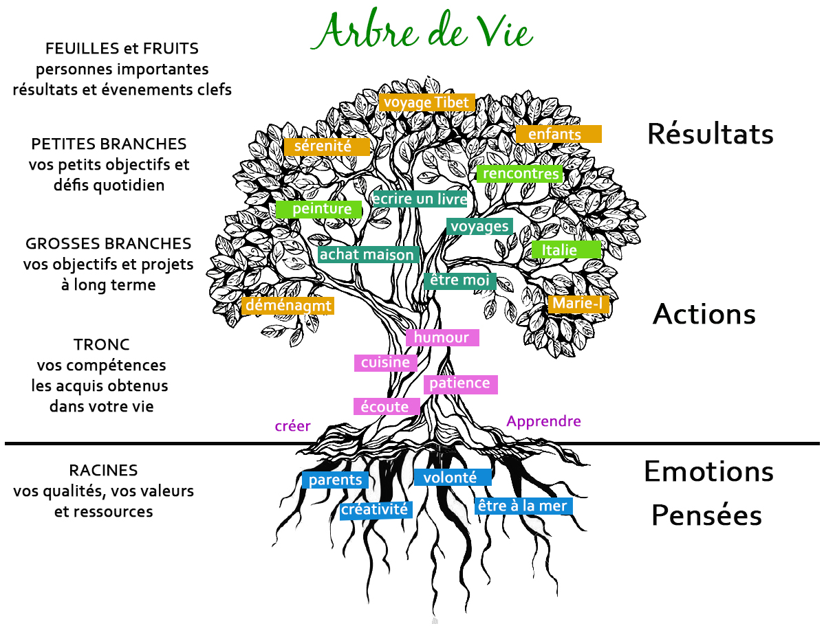 arbre de vie - illustration.jpg