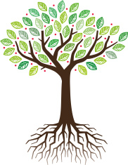 33398924-tree-and-roots-illustration.jpg