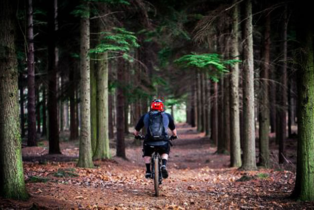 Cycling-with-Travel-Architects.jpg