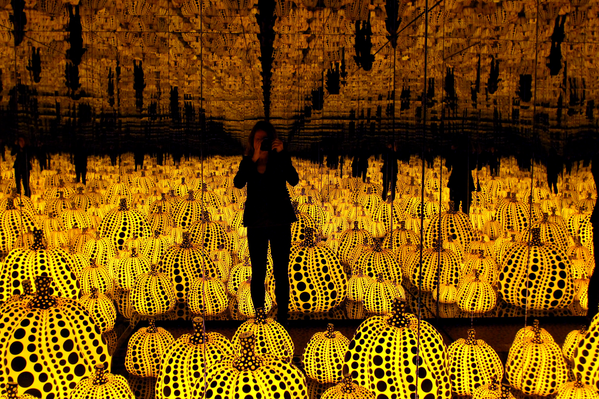 Trapped in the Pumpkins: by Bex Walter (Creative Commons licence: https://creativecommons.org/licenses/by/2.0/)