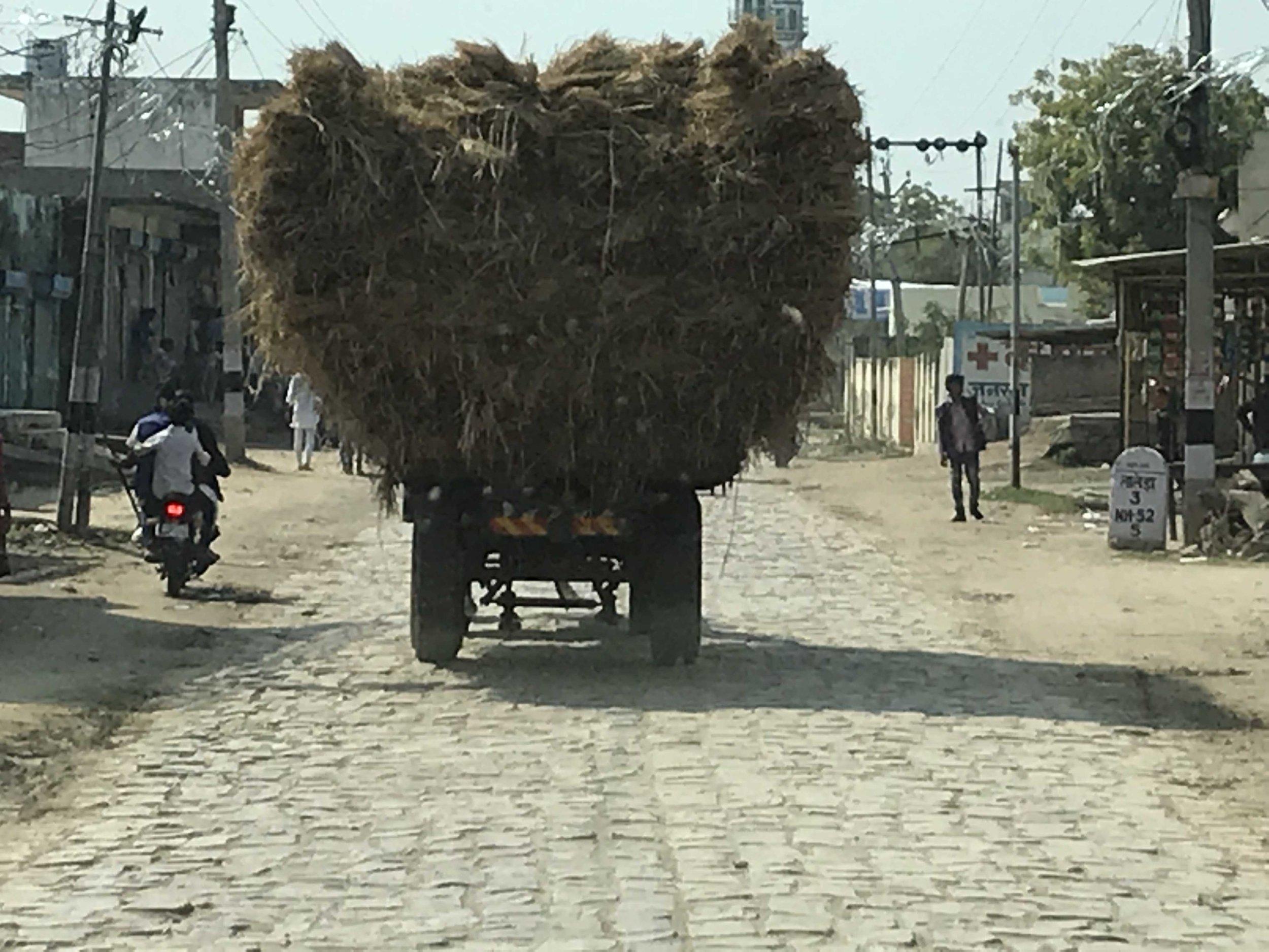 Raj truck with hay.jpg