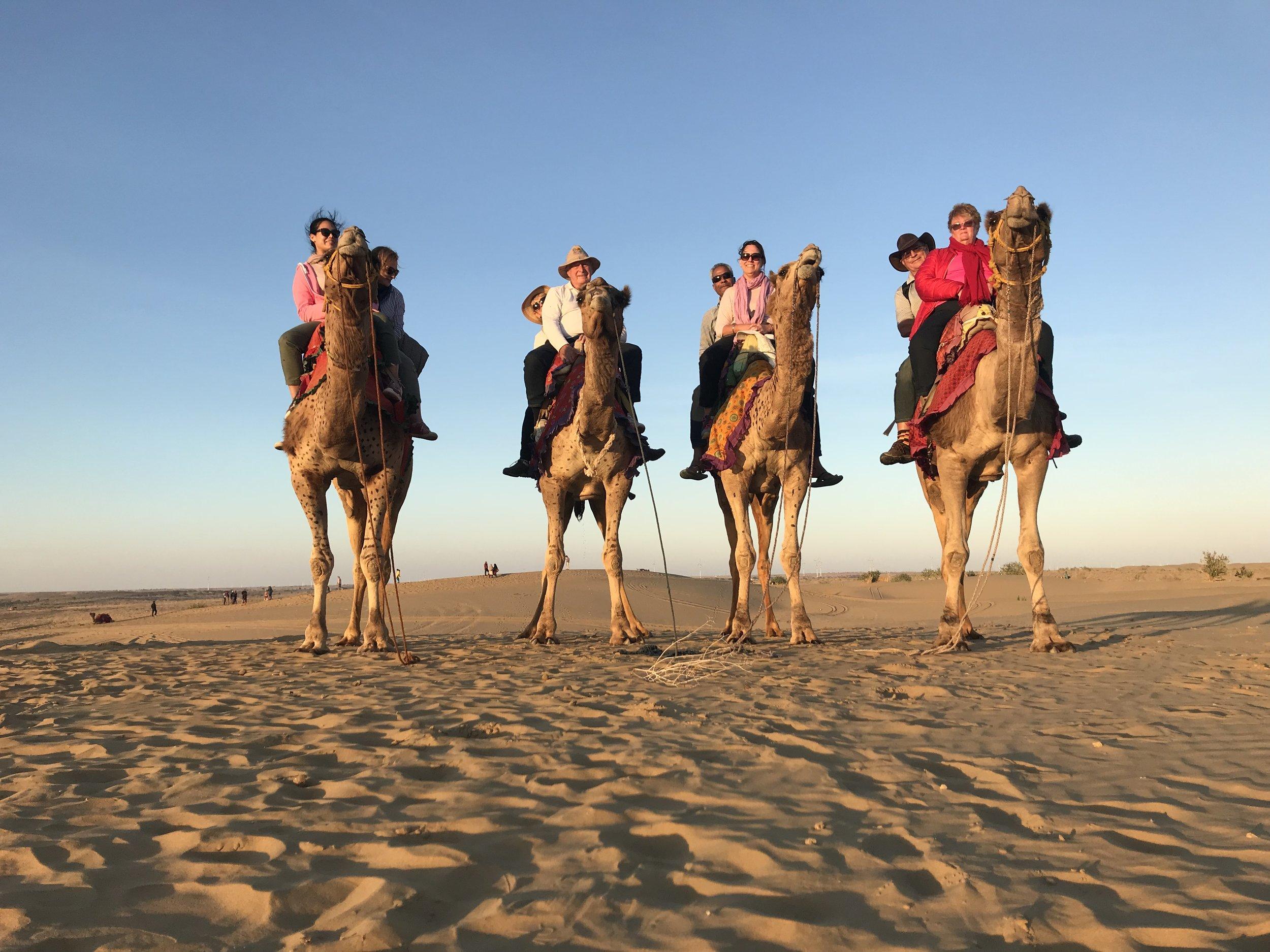 Raj 4 camels.jpg