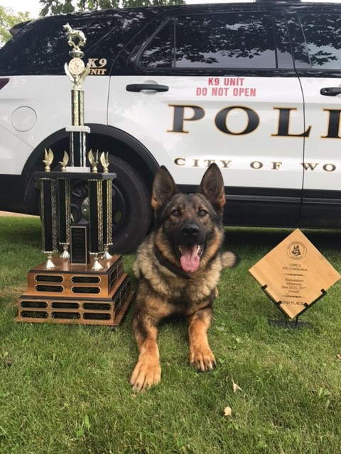 Baden and his trophies from PD-1 Trials for Apprehension