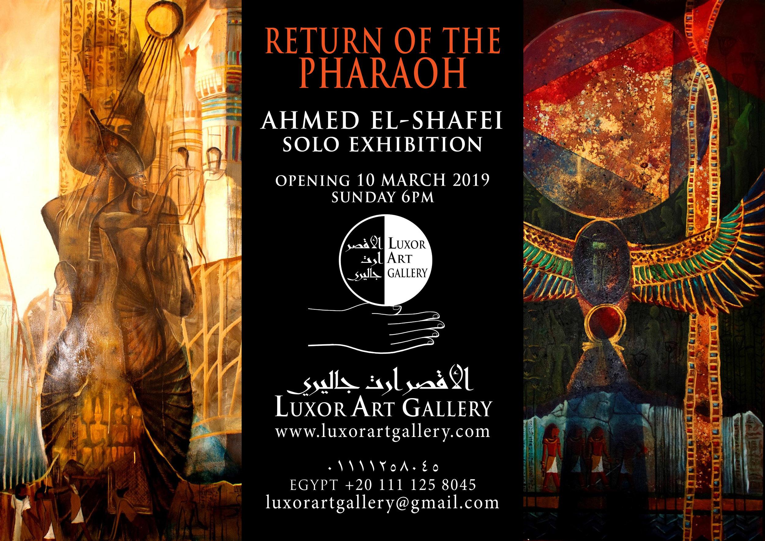 AHMED EL SHAFEI EXHIBIT.jpg