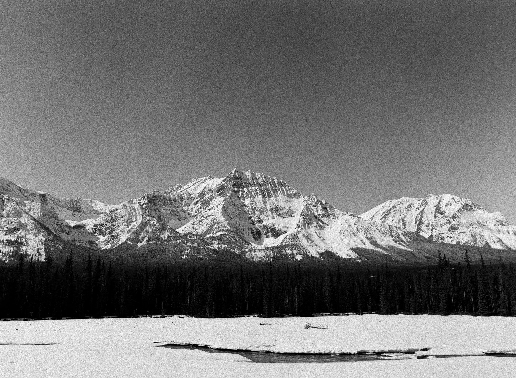 The Athabasca River, Jasper National Park. // TMAX400