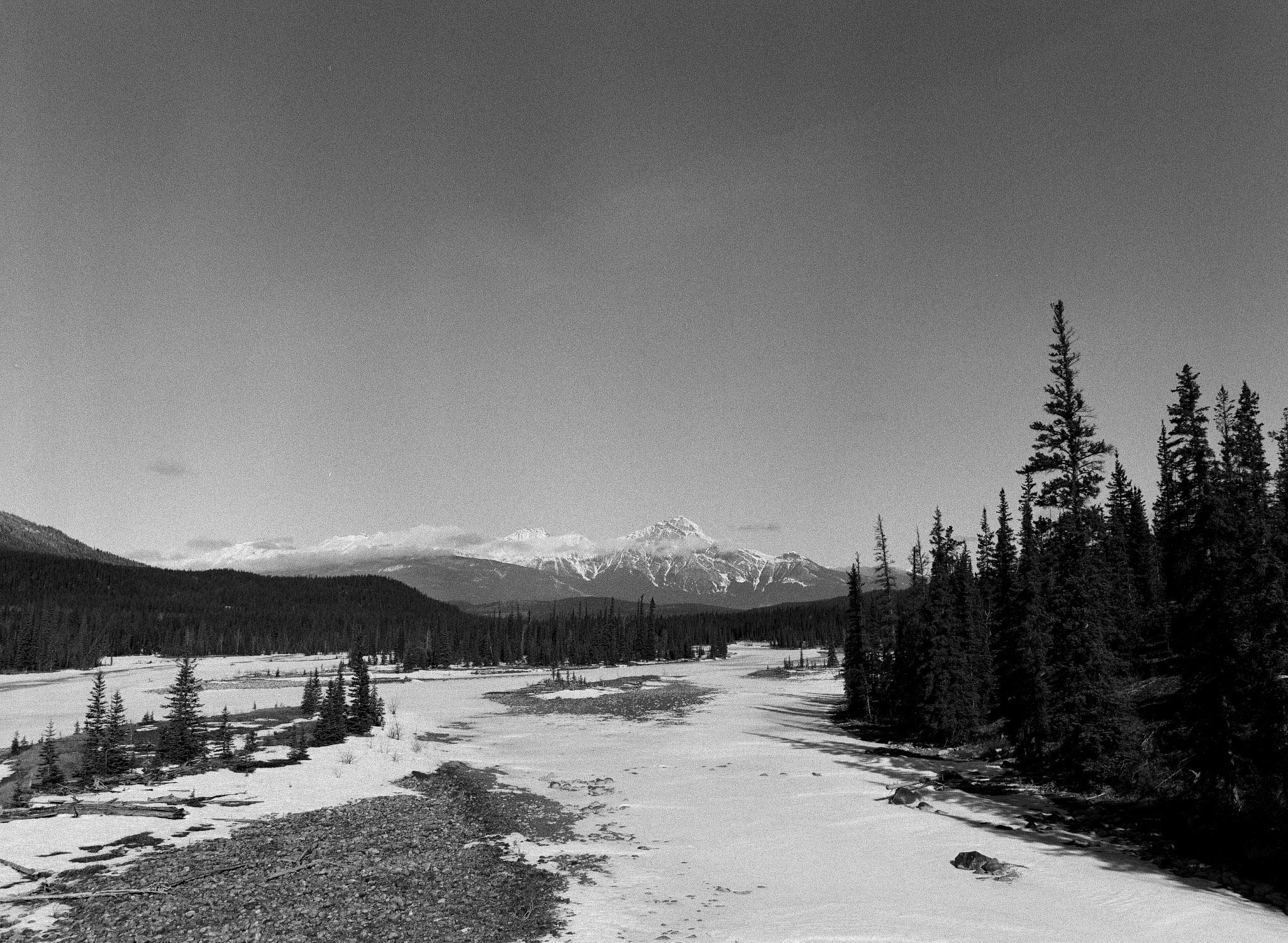 Pyramid Mountain, Jasper National Park. // TMAX400