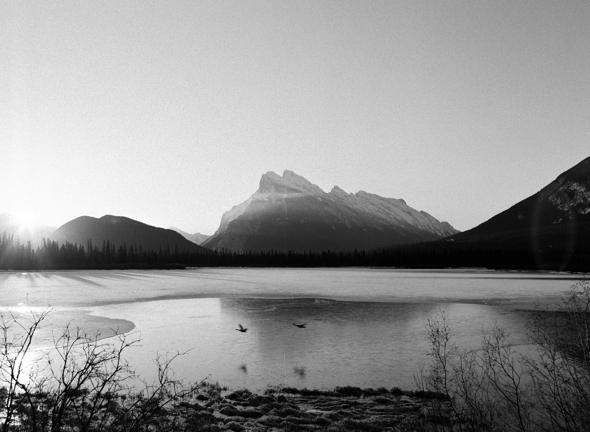 Mount Rundle from Vermillion Lakes. // TMAX400