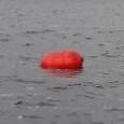 temporary-buoy.jpg