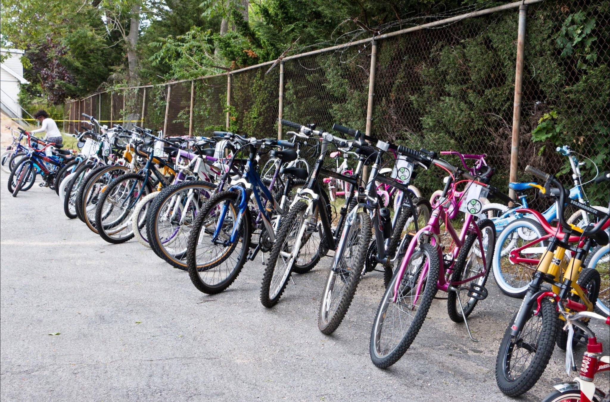 Row of Bikes Dana Photo1.JPG