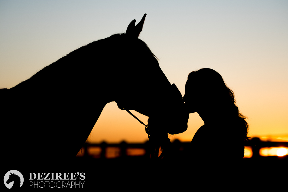 equestrian photographer: girl and her horse in silhouette