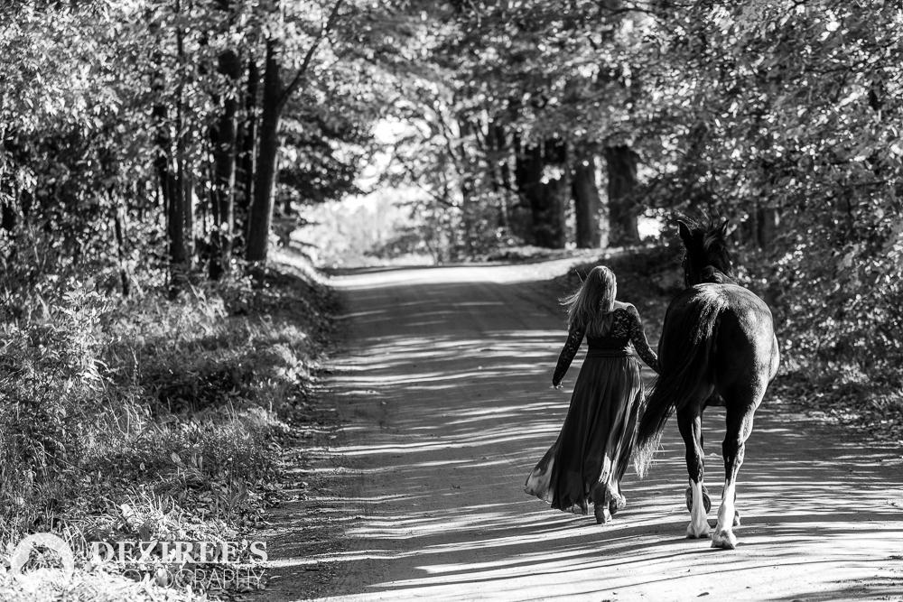 Tack shop wisdom nationwide horse photographer