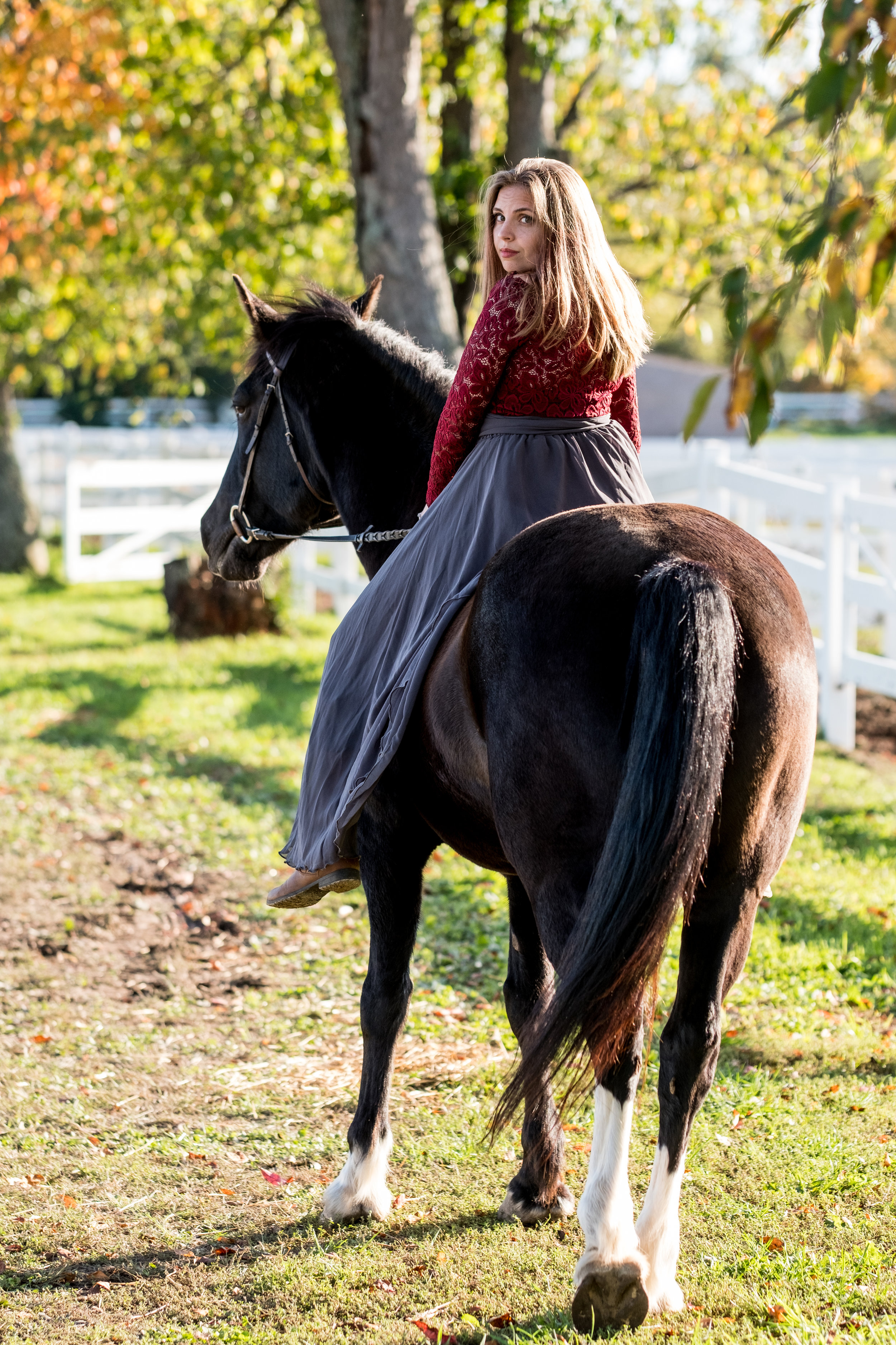 Michigan equestrian photographer