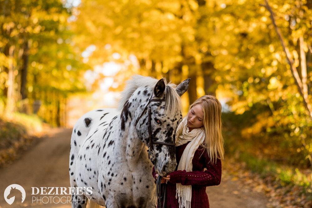 autumn Michigan equestrian photography