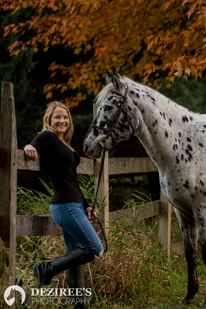 autumn Michigan equestrian photography in the fall colors