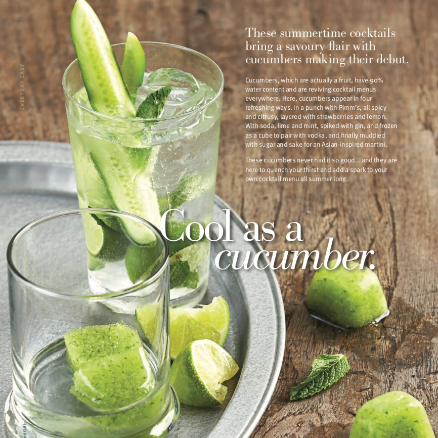Gin with mint and cucumber spear