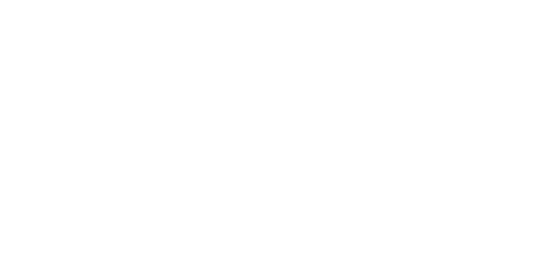 ANNA FINAL LOGO WHITE WITHOUT BACKGROUND.png