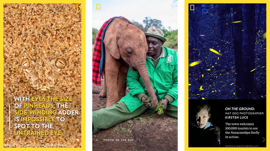 Led experience design and content strategy for National Geographic's interactive daily magazine,  Snapchat Discover . The channel grew to more than 6 million subscribers, and features immersive storytelling in culture, wildlife, travel, and science.  AdWeek Snapchat press
