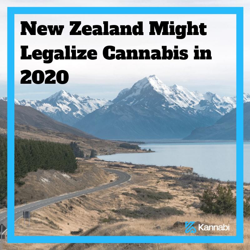 Kannabi | Culture of Cannabis