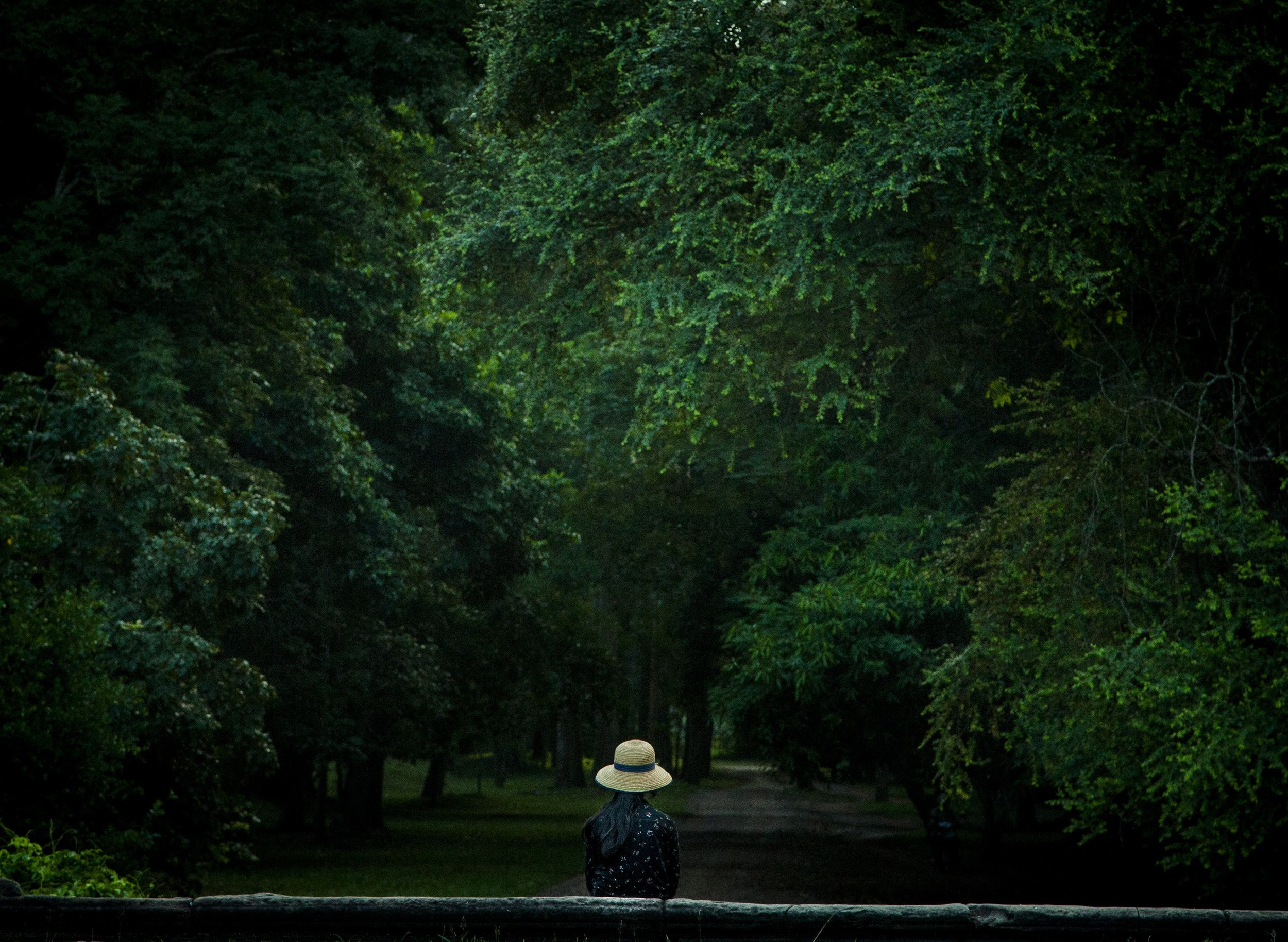 alone in woods.jpg