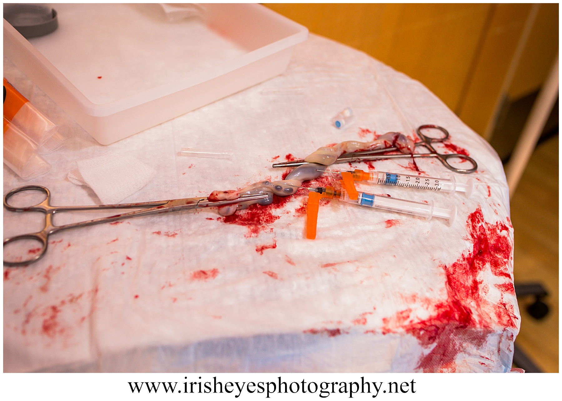 birth photographer gahanna ohio_0274.jpg