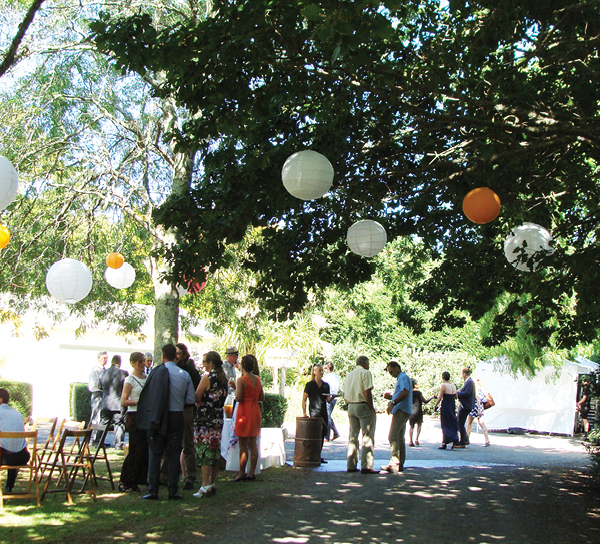 canopy lawn at plum meadows - venue in north waikato.jpg