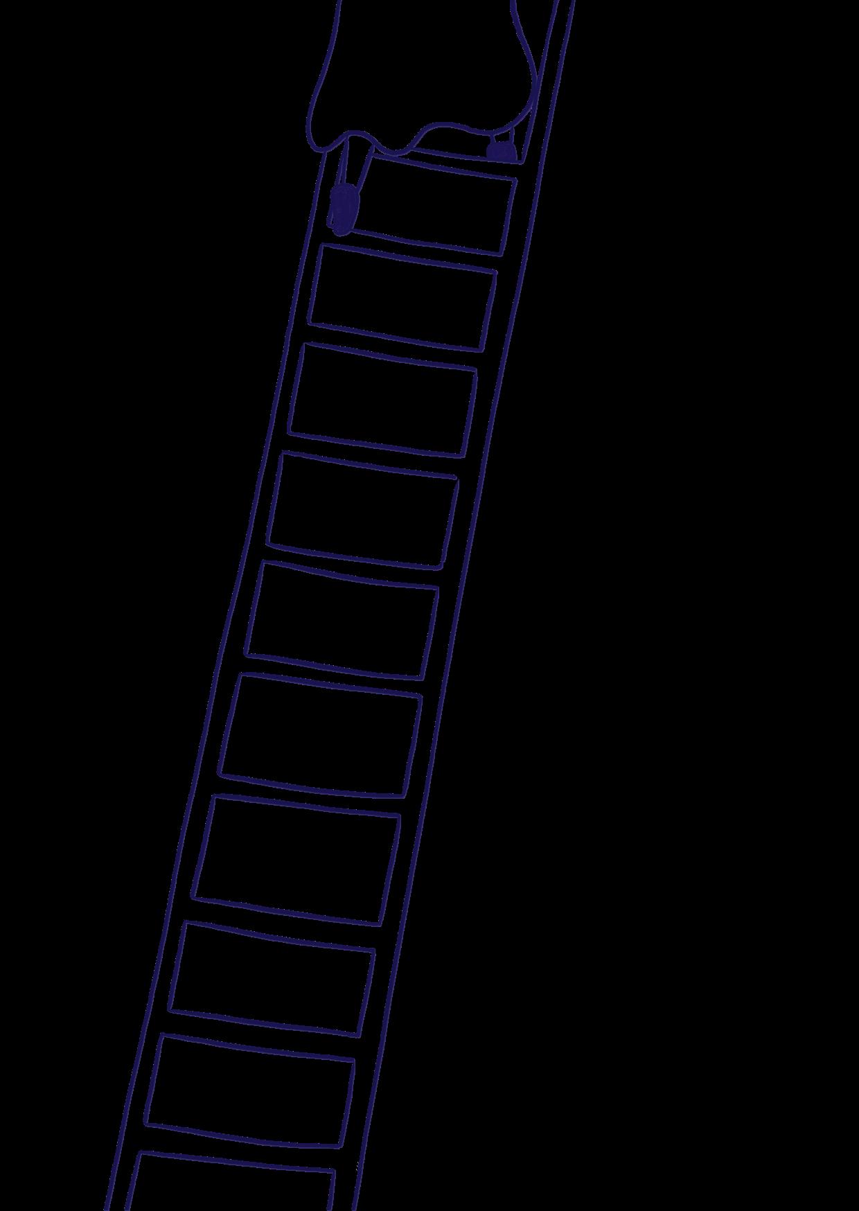 ladder_dangerlam