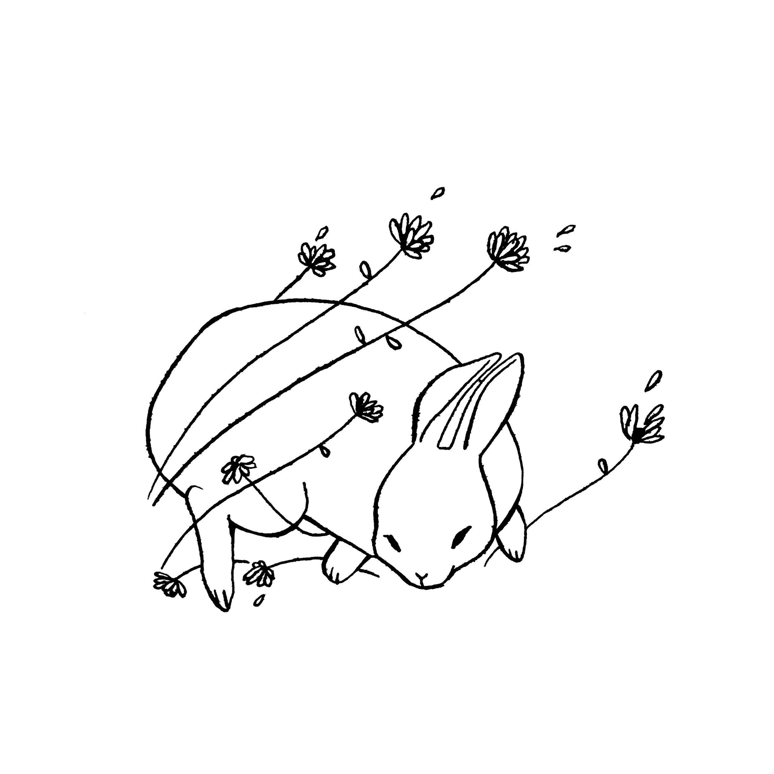 4. faunafatale_rabbit.jpg
