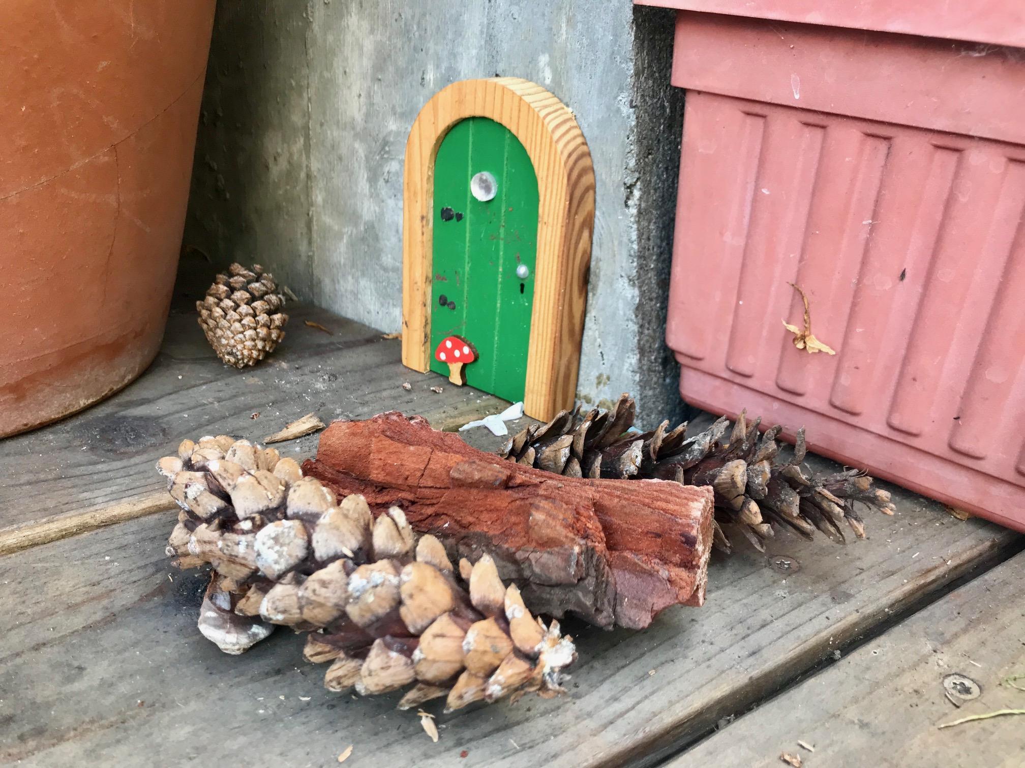 Fairy Door.jpg