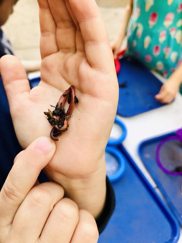 worm hand.jpg