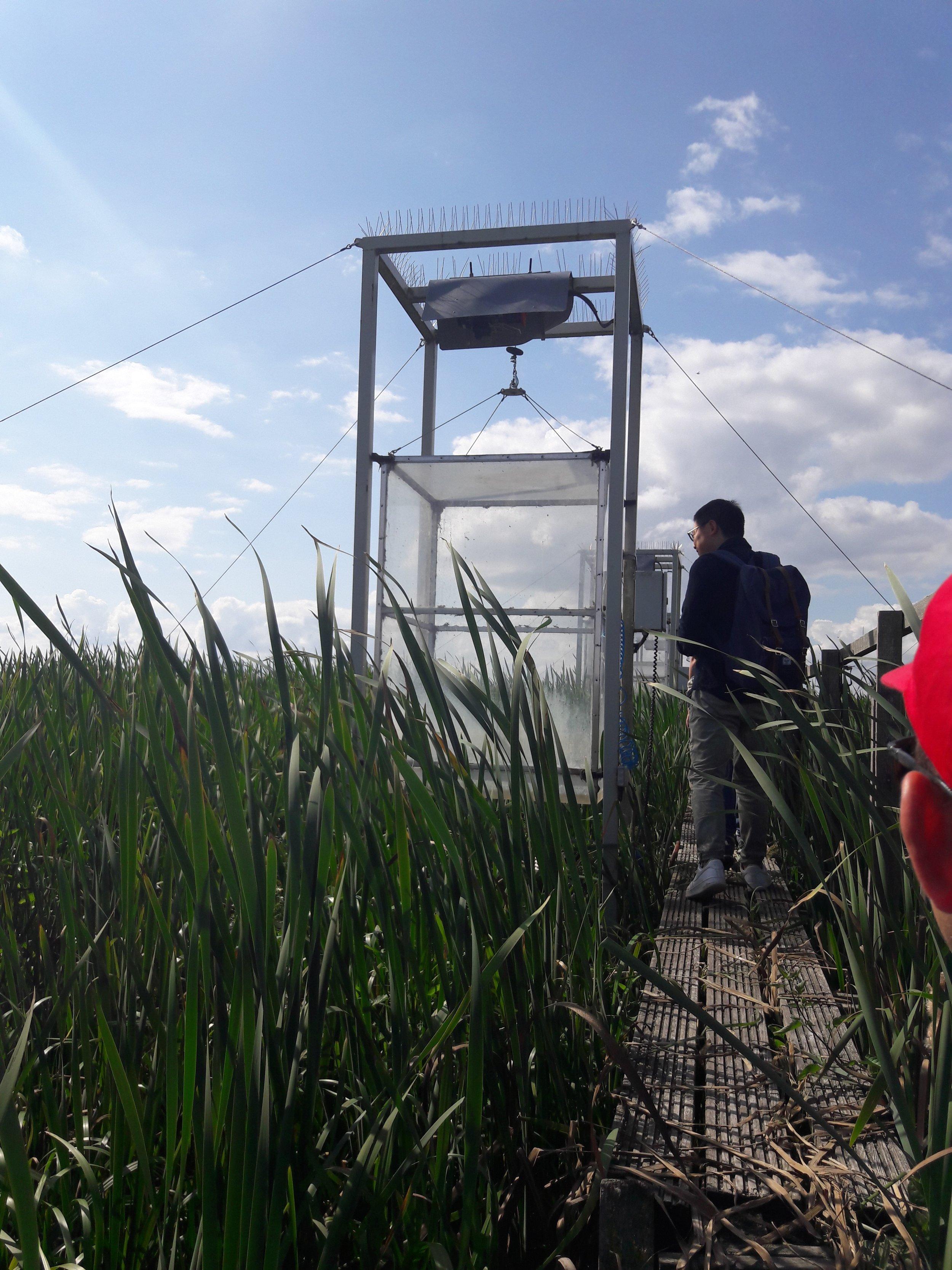 Automated chambers at the polder Zarnekow site. Photo: David Wilson
