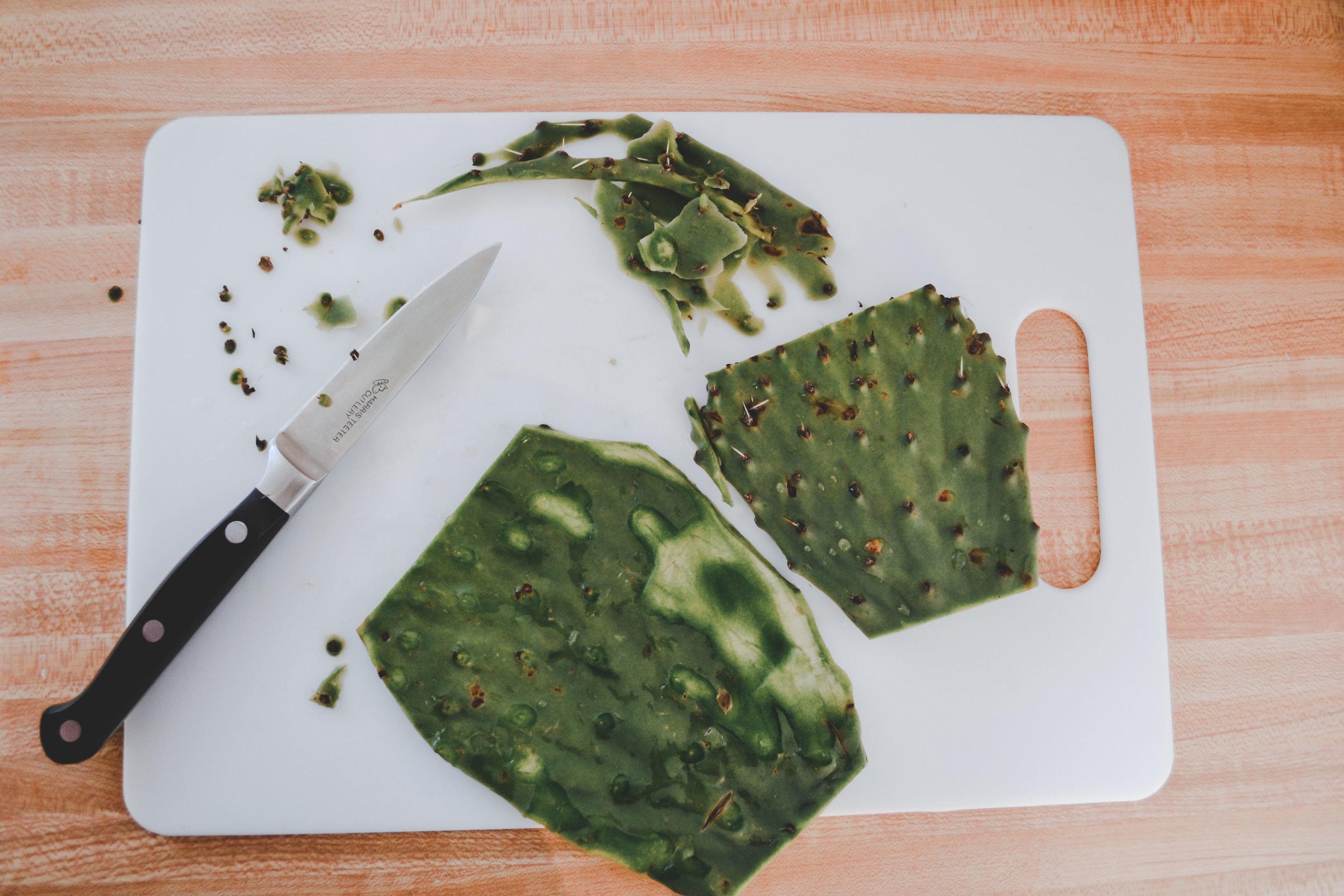 cactusbrunch2.jpg
