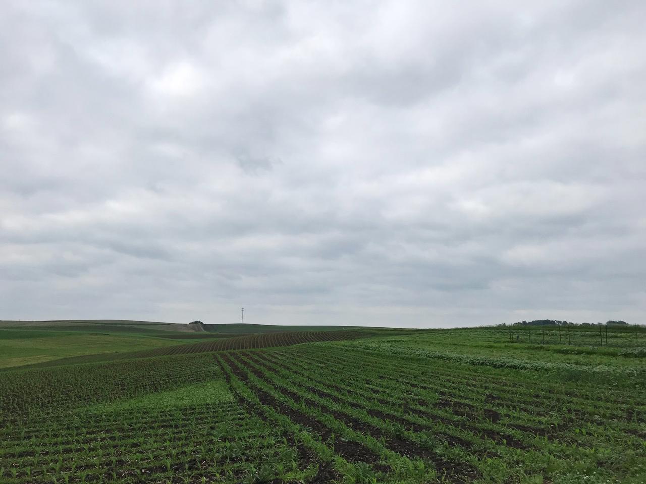 farm_country_01.jpg
