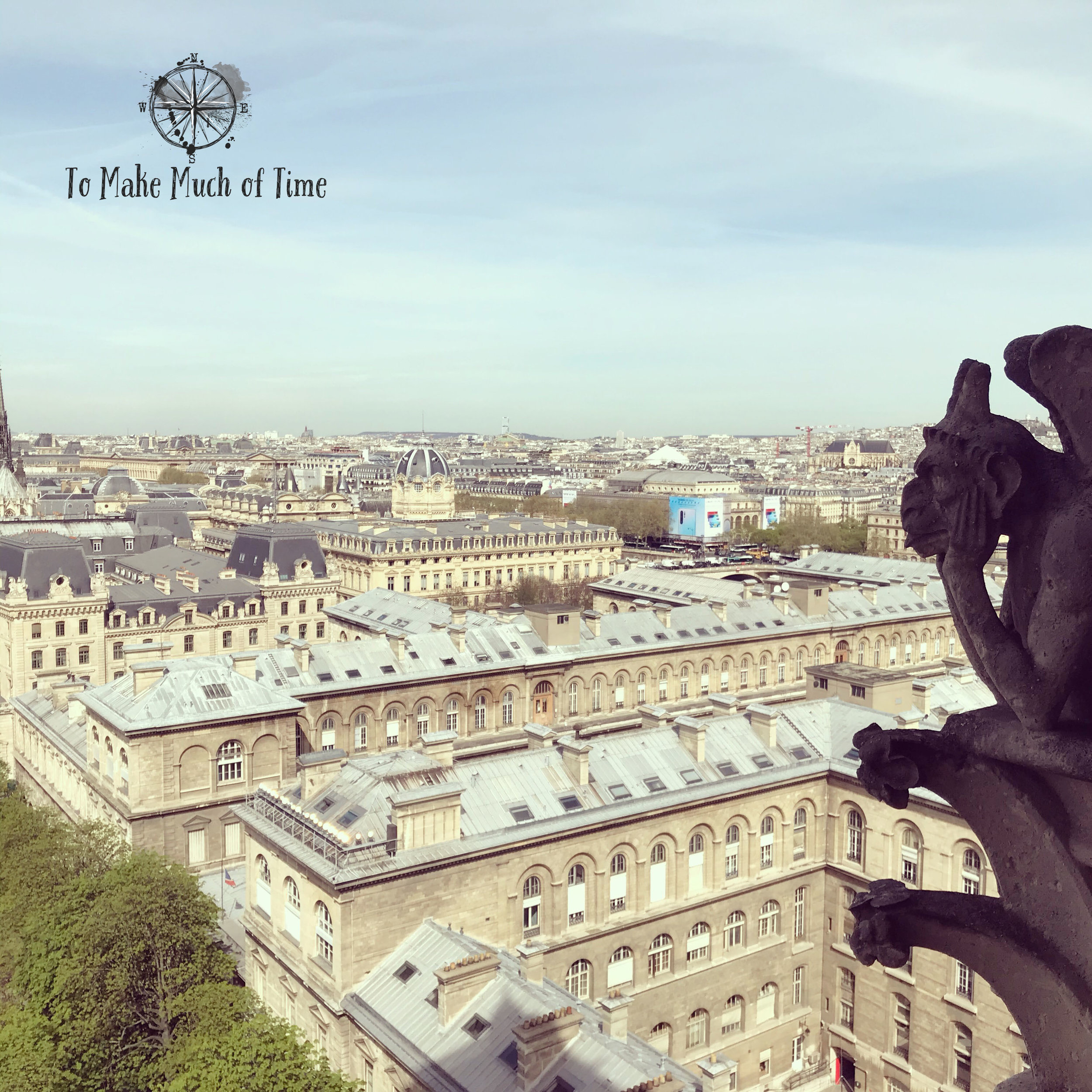 What a view of Paris, even the chimera of Notre Dame approves!