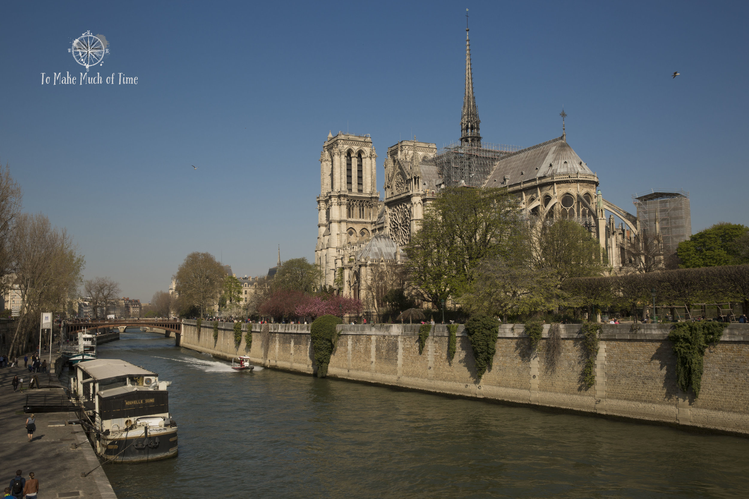 April in Paris! Cherry blossoms add a splash of color against the tan of Notre-Dame.