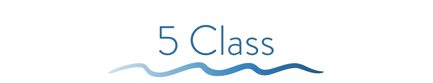 $100 ($20/class) -