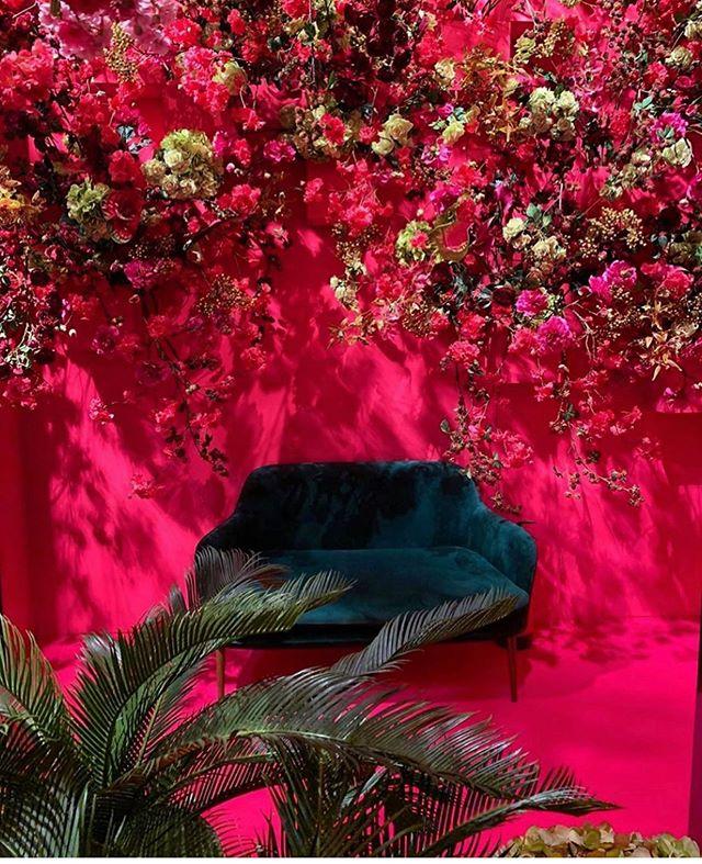 B.O.L.D #colours#interiordesign#velvet#flowers#pink#petrol @silkkaflowers