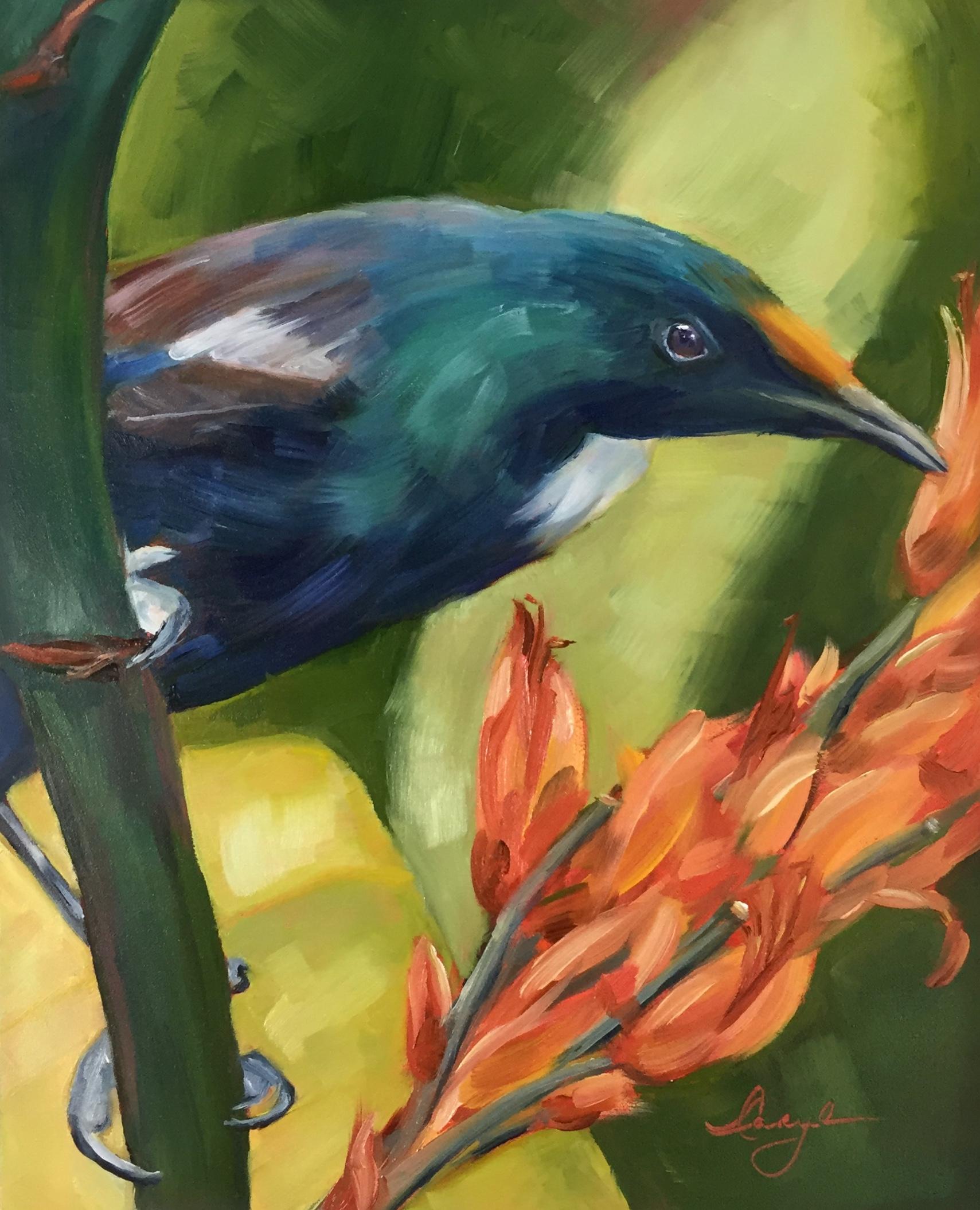 Tui Maori Messenger Bird.jpg
