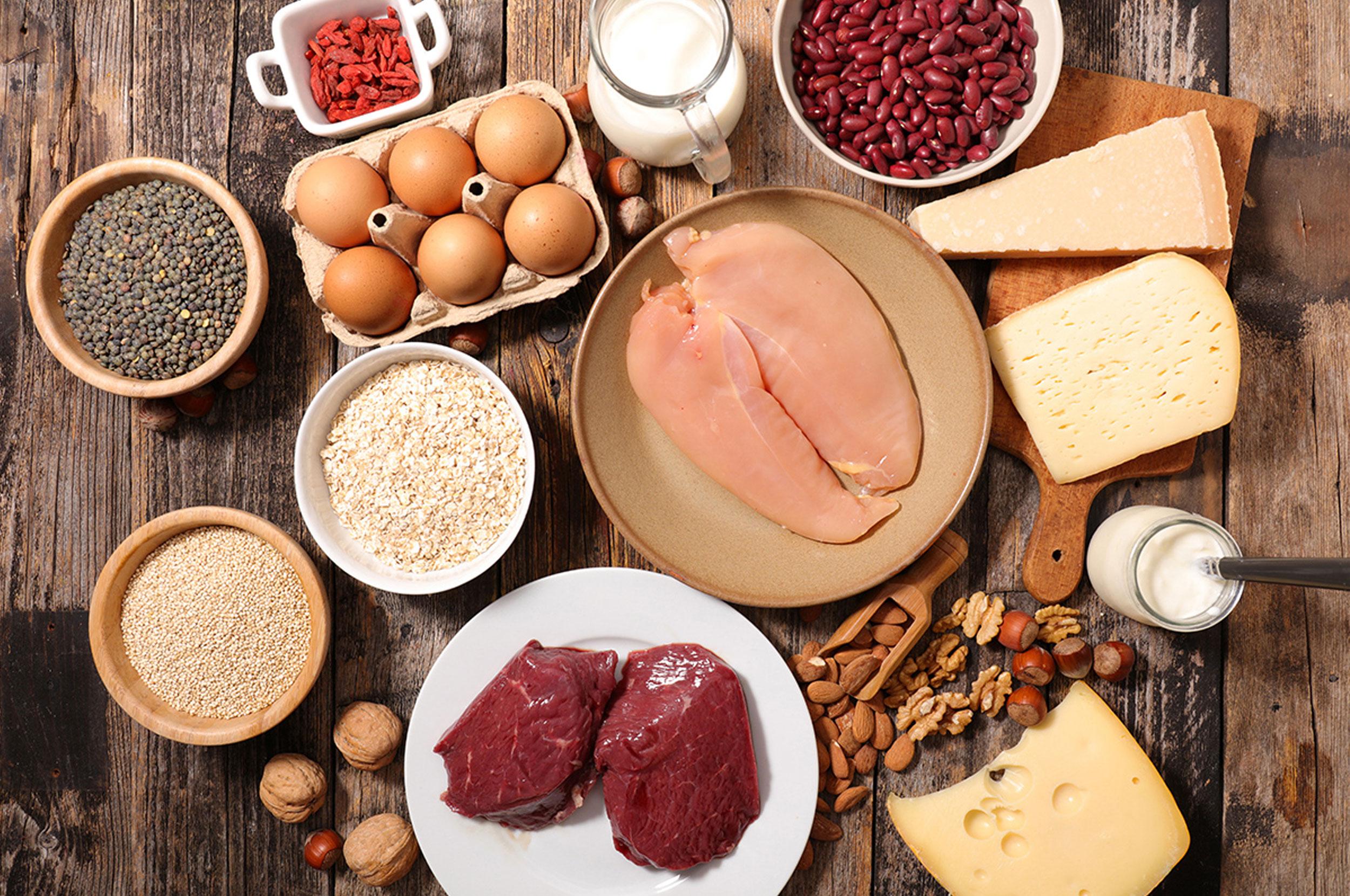 protein-the-basics.jpg