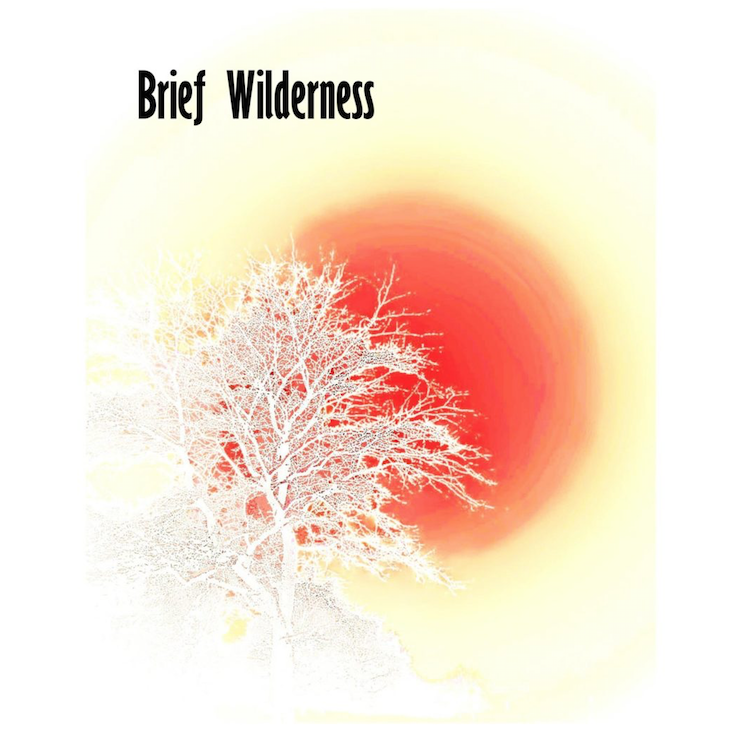 Brief-Wilderness-Sq-Graphic.png