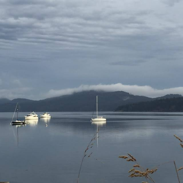 photo courtesy of Novel Lab on Orcas Island
