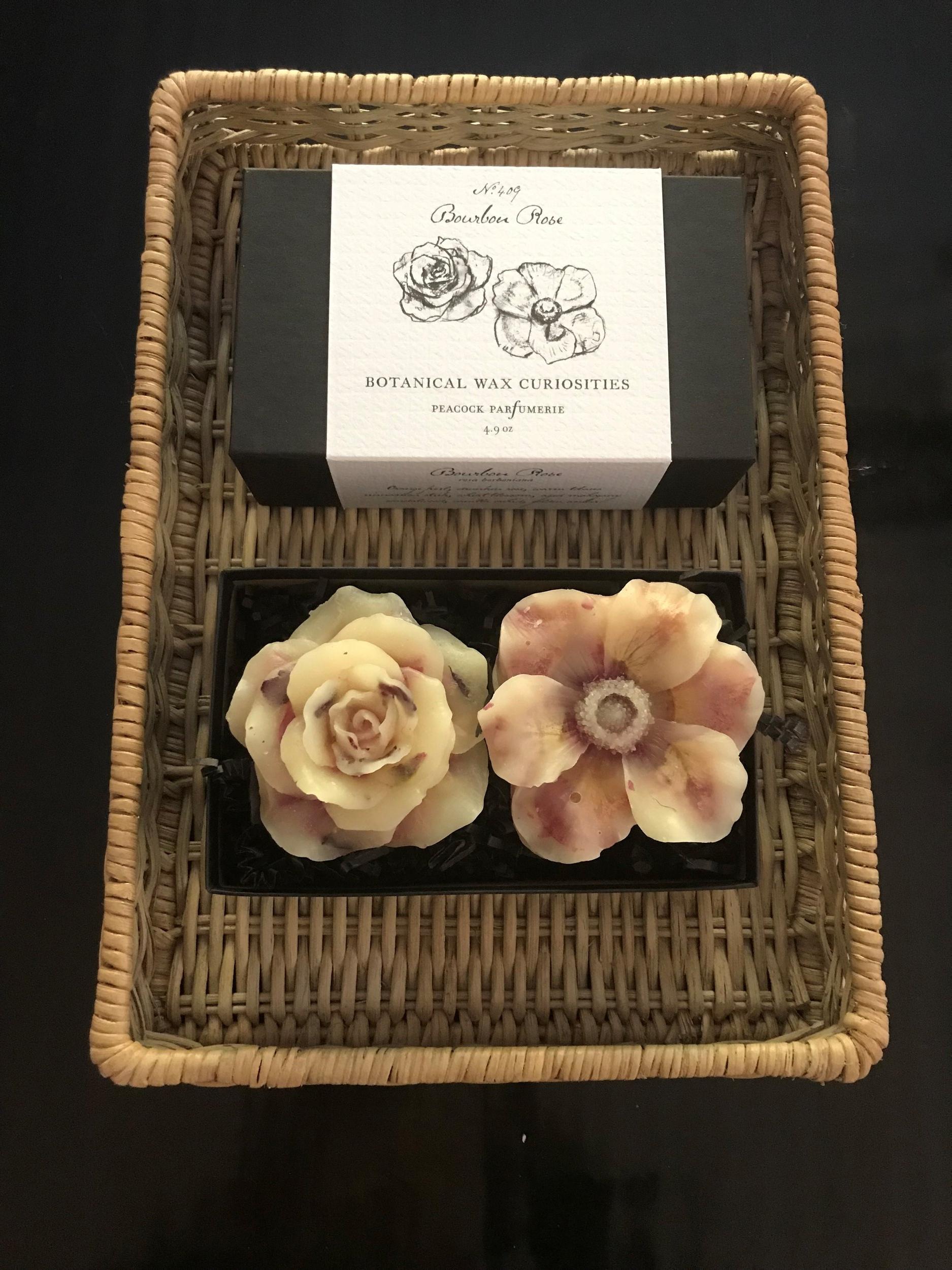 SCW Interiors Guest Bedroom Botanical Wax Curiosities II