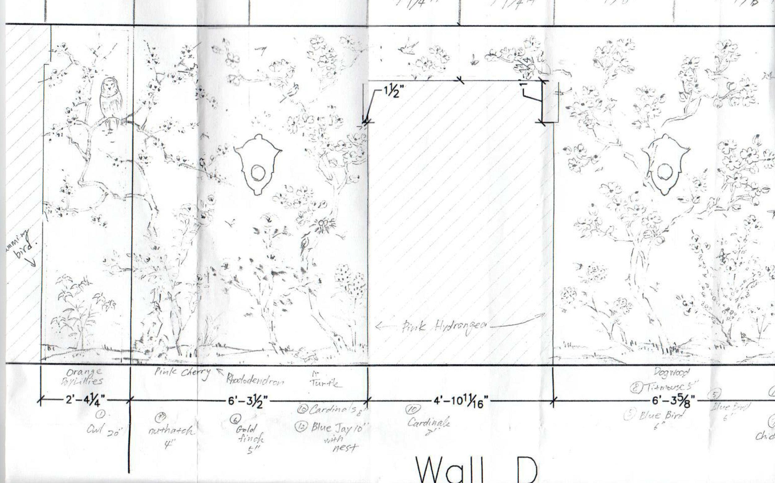 Huffard Wallpaper Drawing 3.jpg