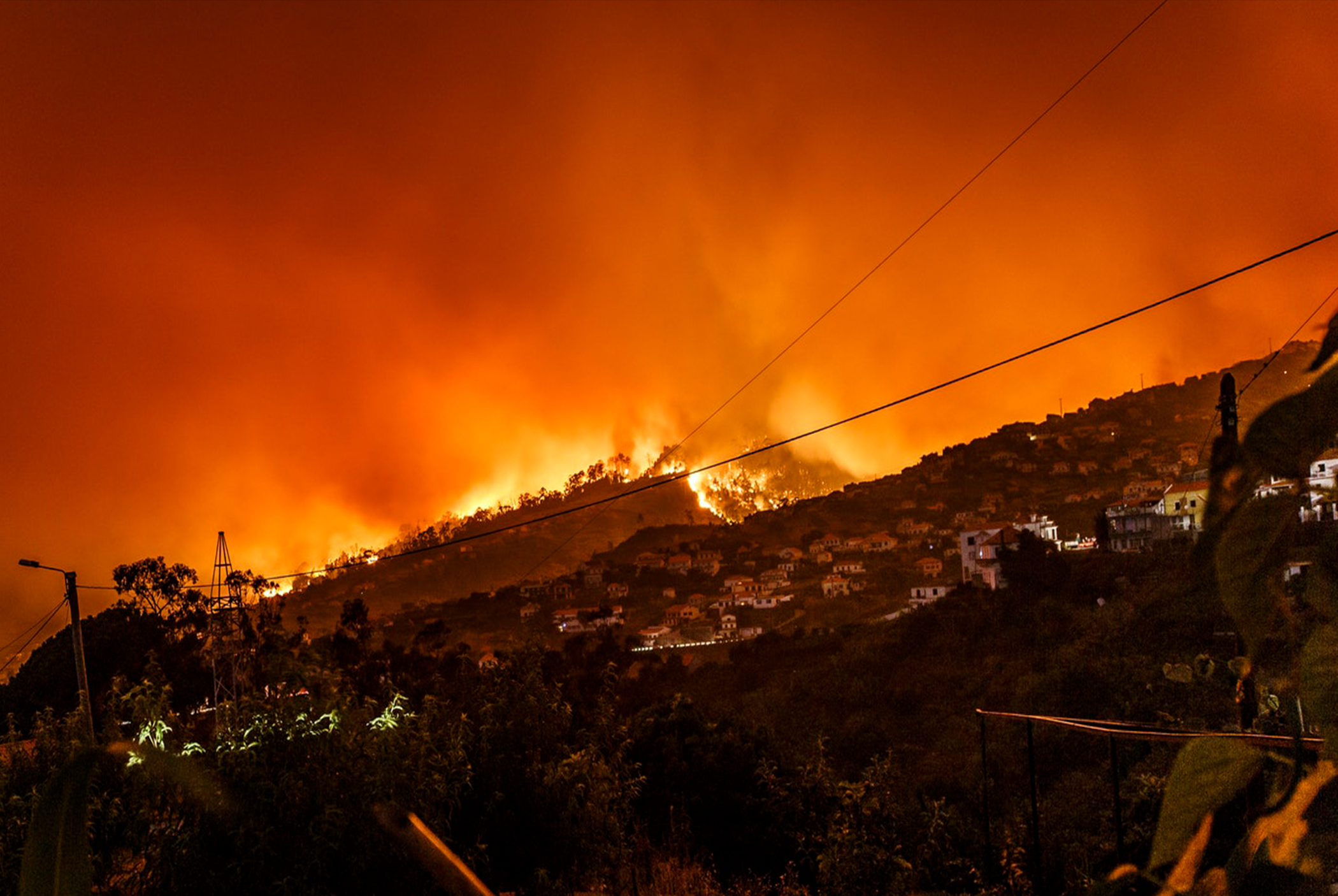 Disaster & Emergency