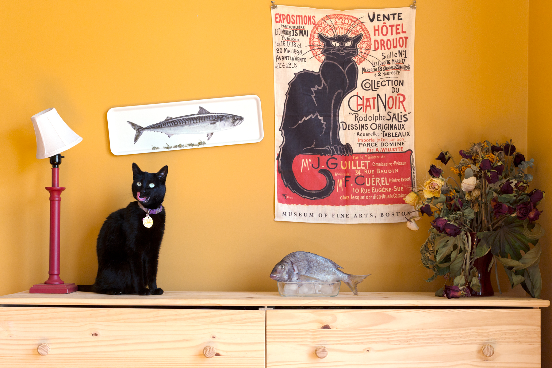 Le Cats and Le Fish, 2014