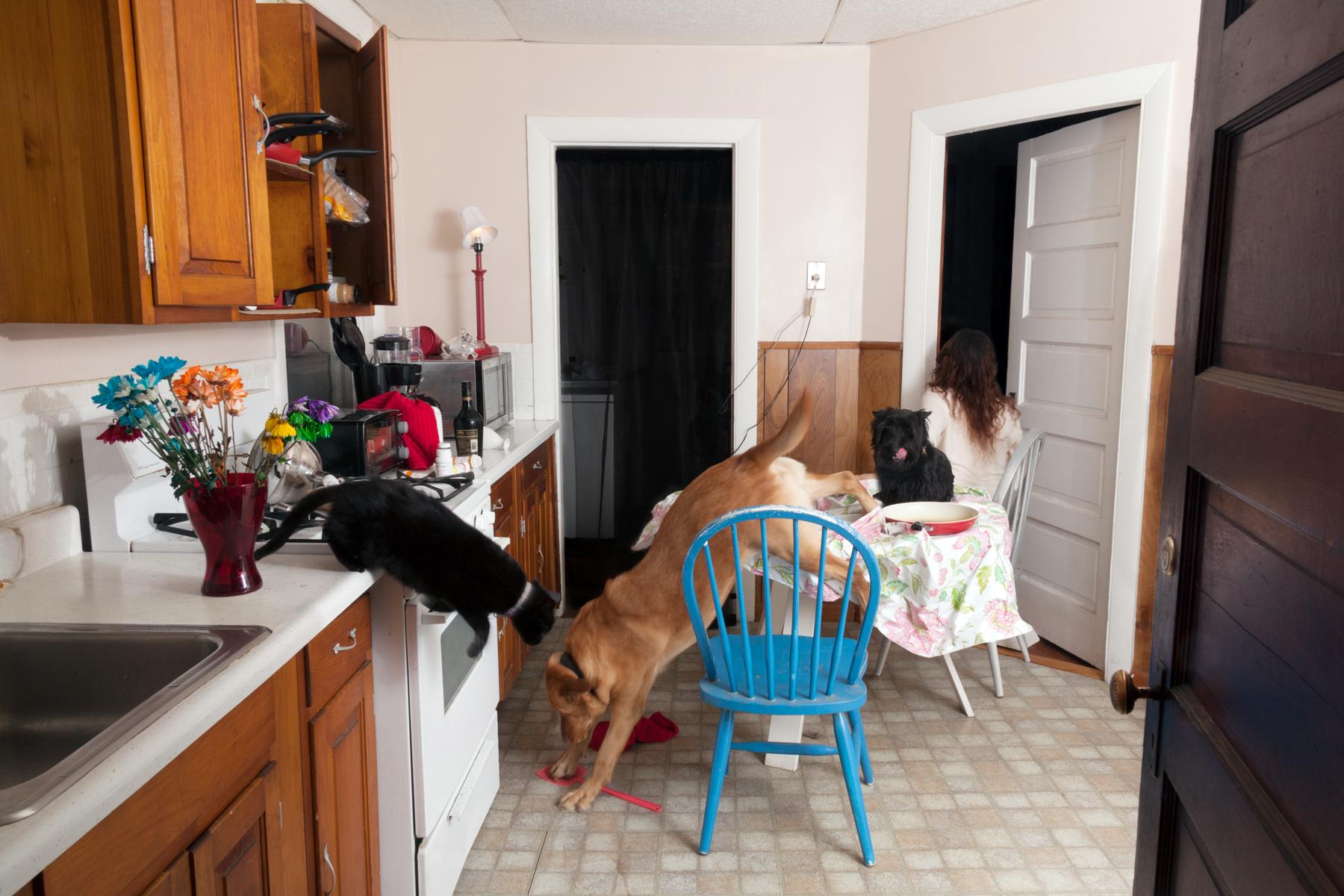 Family Kitchen, 2013