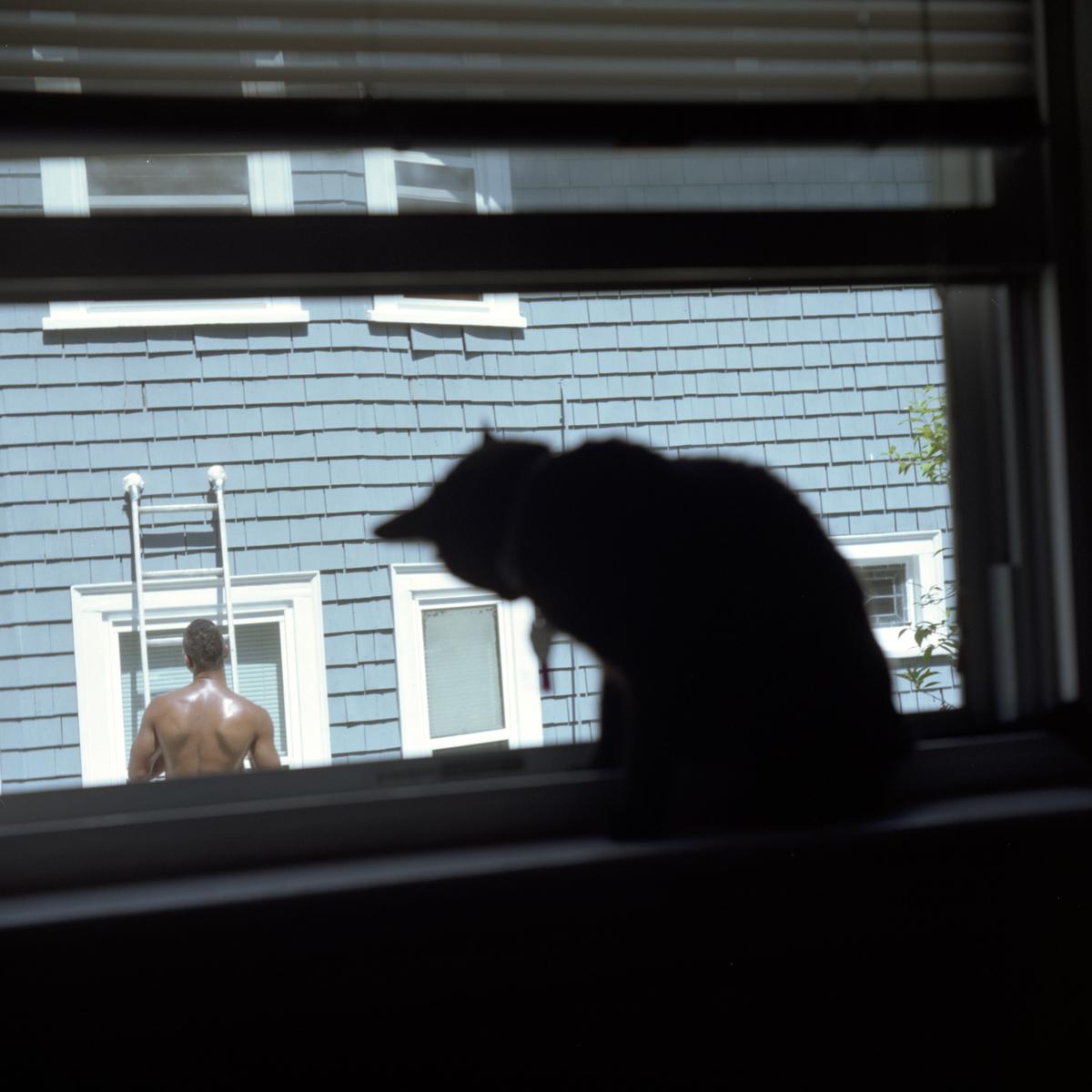 WindowShopping.jpg