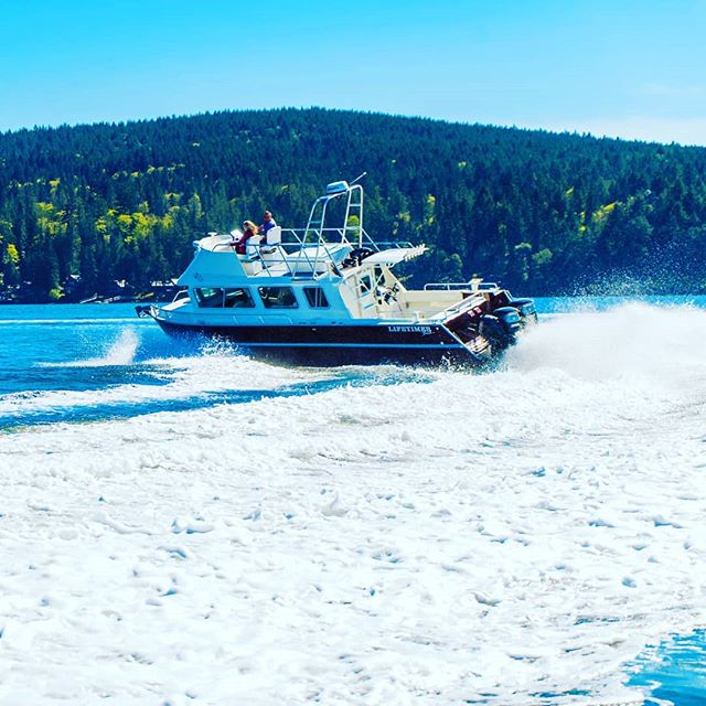 Happy #humpday! Half way through the week. Check out our website www.lifetimerboats.com to find your summer (well, all seasons really...) dream boat.  #Lifetimer #lifetimerboats #boatlife #fishing #adventure #charter #luxury