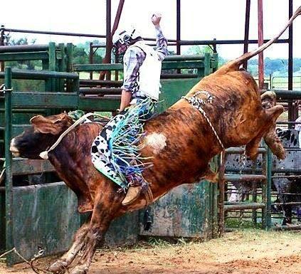 """Colt Wrangler, custom bike builder, talks about riding bulls, tearing apart bikes and living his dream."" - - AMC"