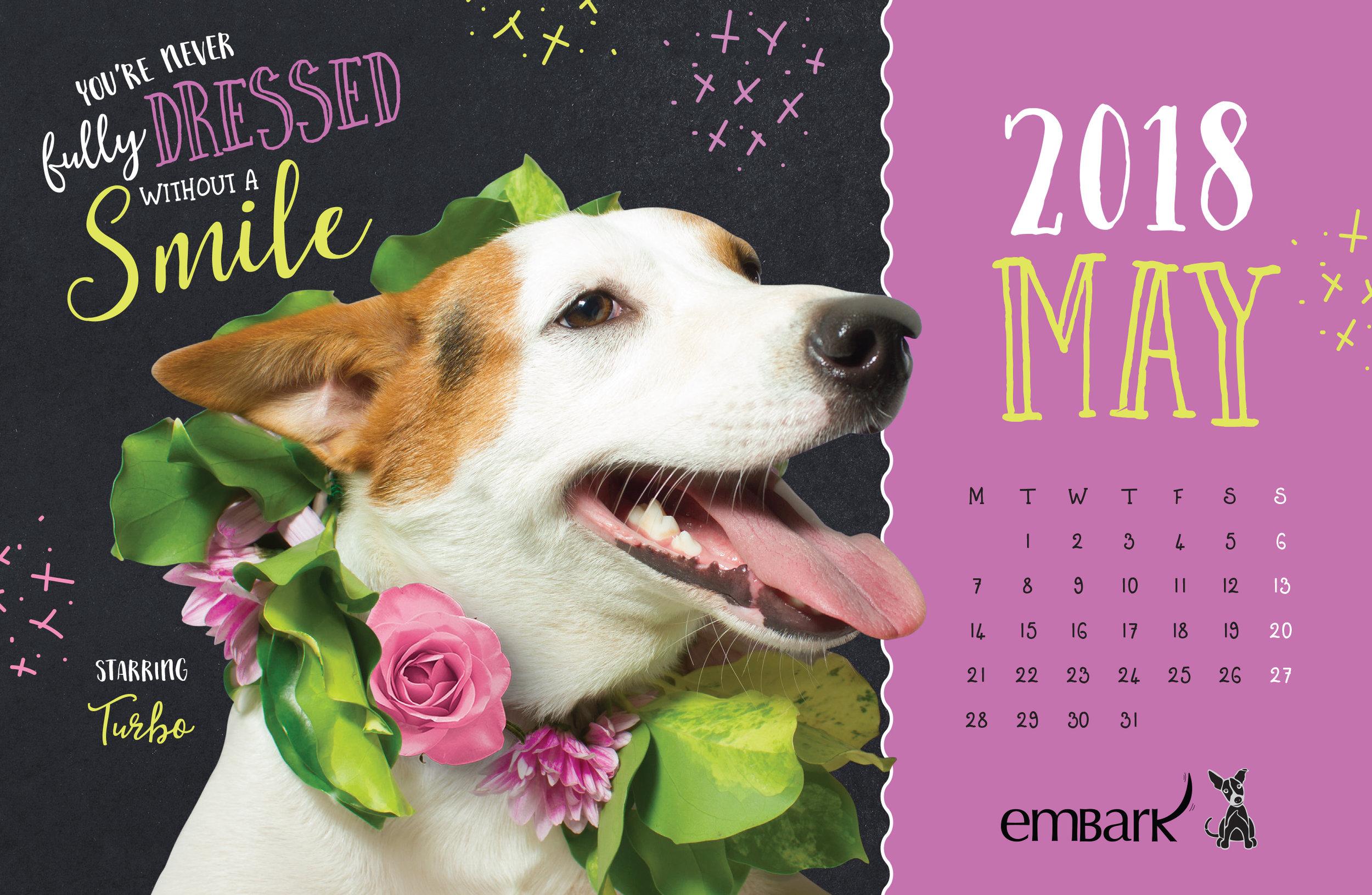 Embark-Calendar-2018-11.jpg